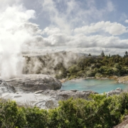 rotorua geyser