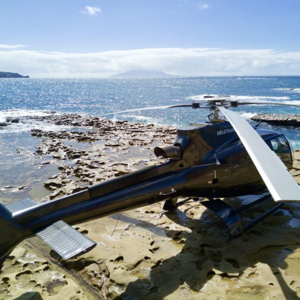 EC130-helicopter-on-remote-Kawau-Island