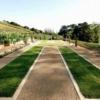 Poderi Crisci garden