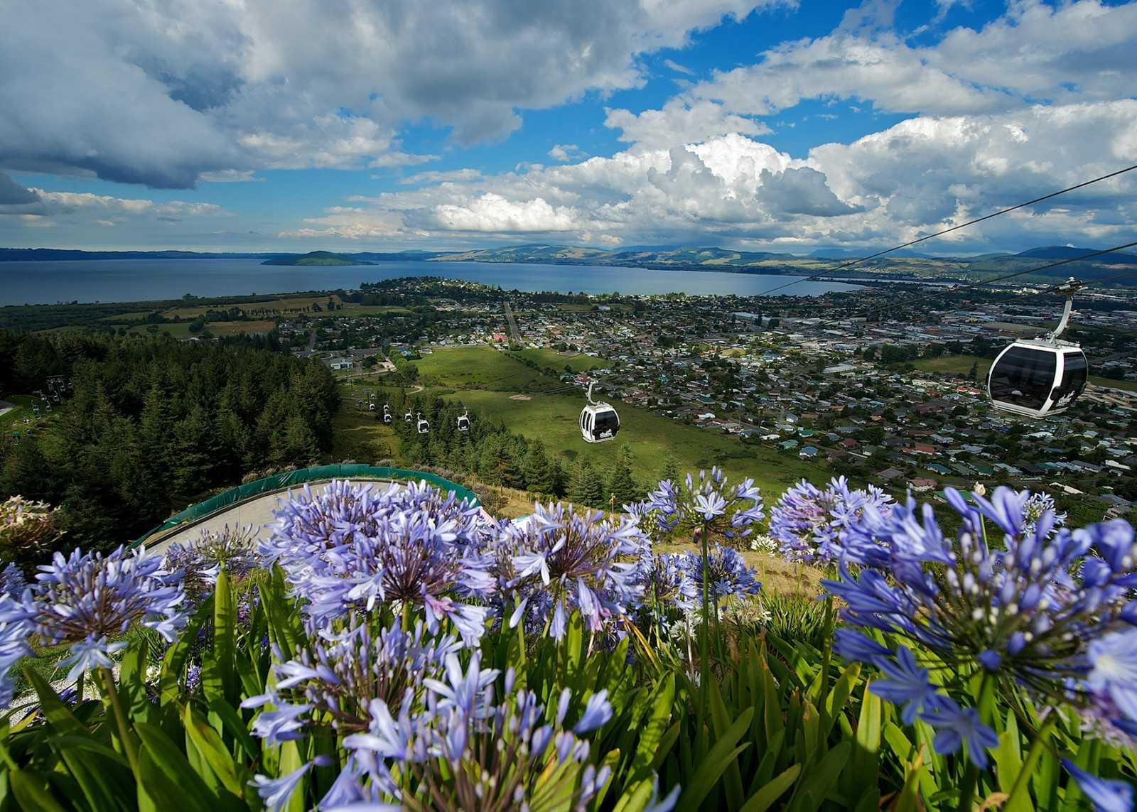Skyline Rotorua Gondolaweb