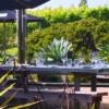 Te Motu terrace