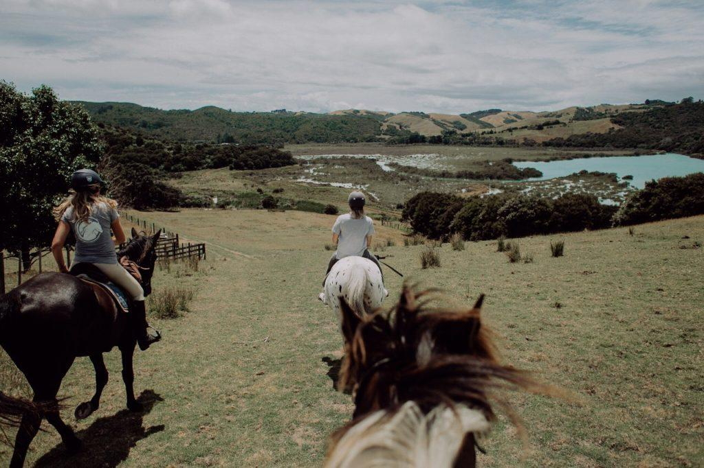 Horses and their riders enjoying the view over the mangroves from the top of the hill.