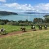 panoramic view of horse trek with Te Matuku Bay in the background at Waiheke