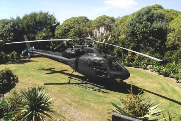 Delamore Lodge Helecopter