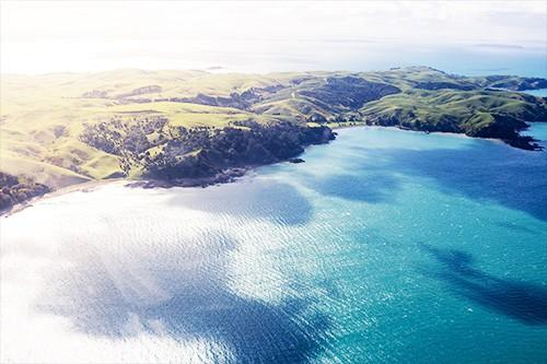 Fly To Waiheke Island With Heletranz