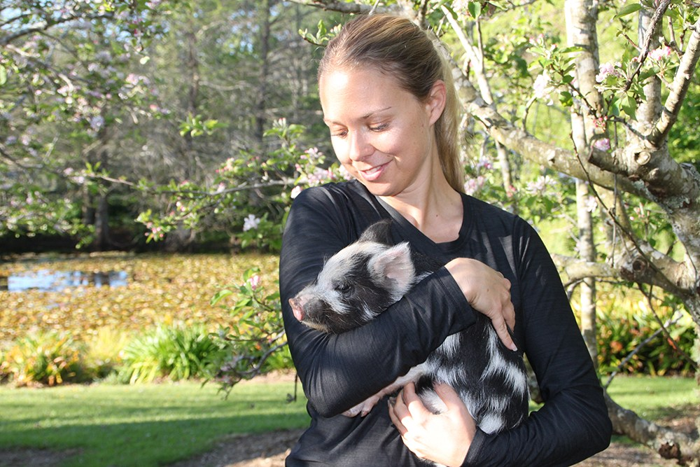 Sofia Ambler with pigs