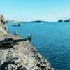 Heli-Fishing