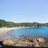 Kawau Beach picnics